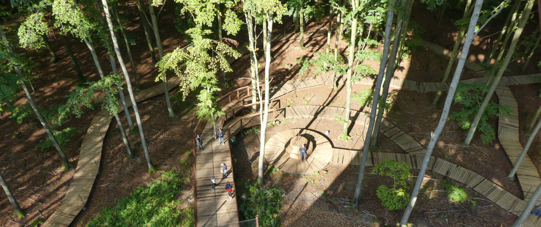 Skovtårnet. Foto: Maria Kathrine Holt Povlsen